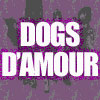 dogs d'amour